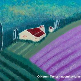 Lavender Fields – Image #36204